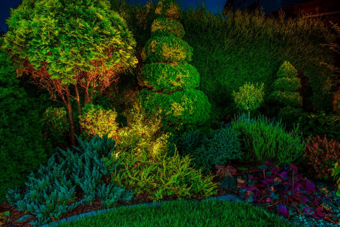 Чаще всего для подсветки деревьев используют прожекторы с направленным светом